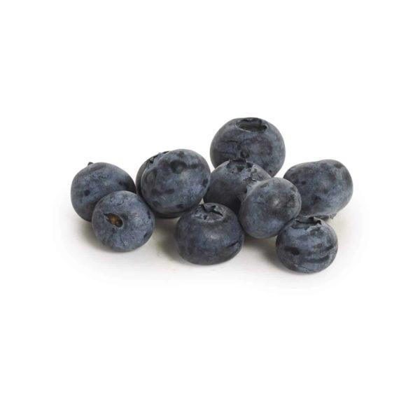 Blueberries Seedlingcommerce © 2018 8259.jpg